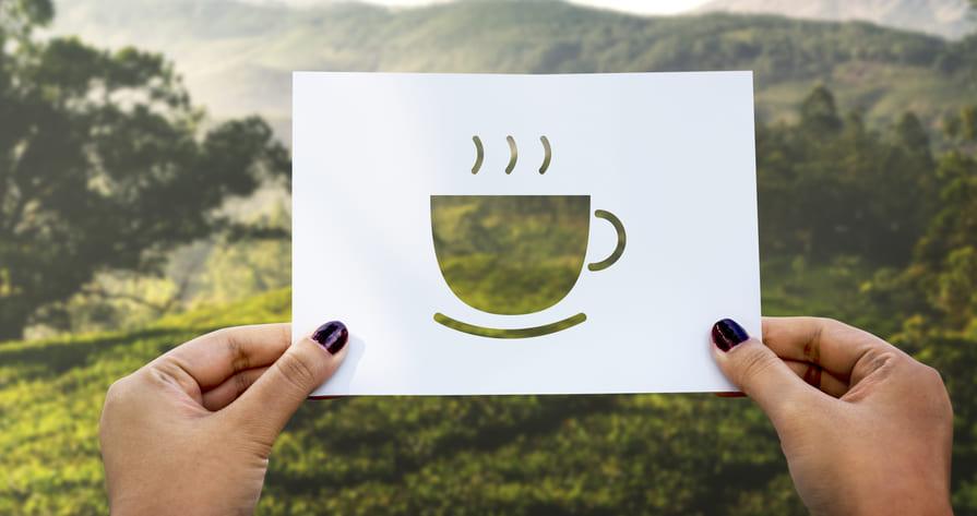 Kawa czy Yerba Mate